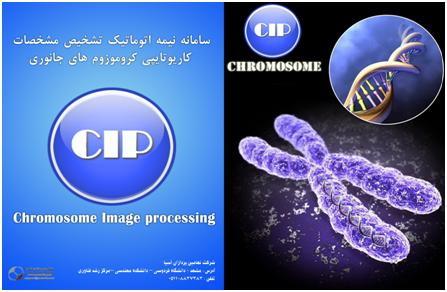 نرم افزار تخصصی شناسایی و دسته بندی کروموزوم های حیوانی
